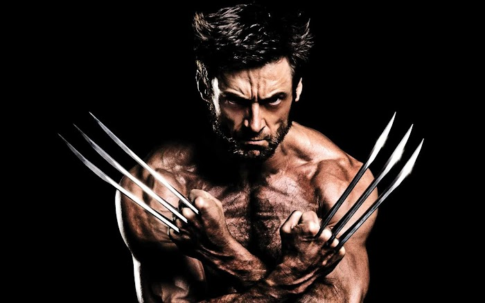 Wolverine HD Wallpapers-Photo Gallery