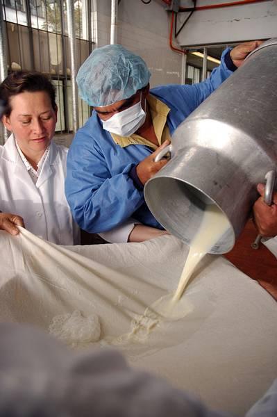 Le sale leche de las chiches negras - 1 part 1
