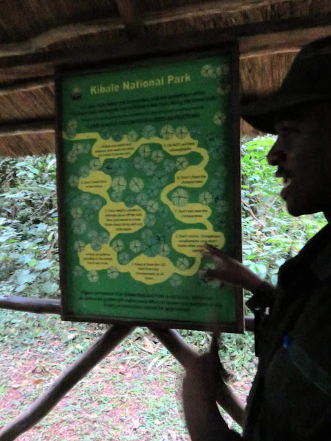 Going over the rules before tracking chimpanzees in Kibale National Forest in Uganda