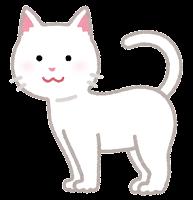 猫の模様のイラスト(白)