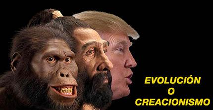 el villano arrinconado, humor, chistes, reir, satira, Trump, evolución, creacionismo, hominido