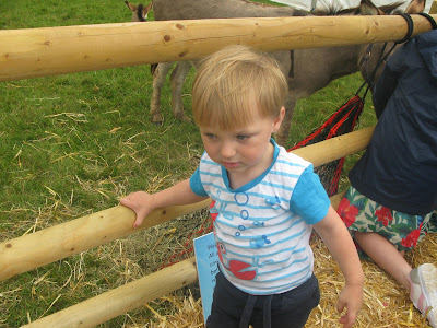 Toddler at farm