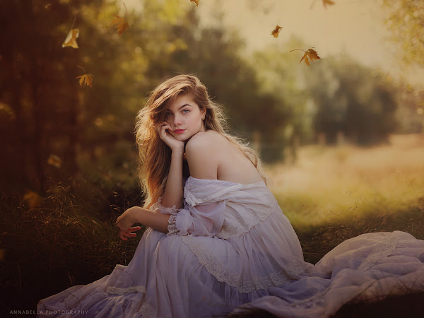 5 Best Selling Autumn Photo Overlays