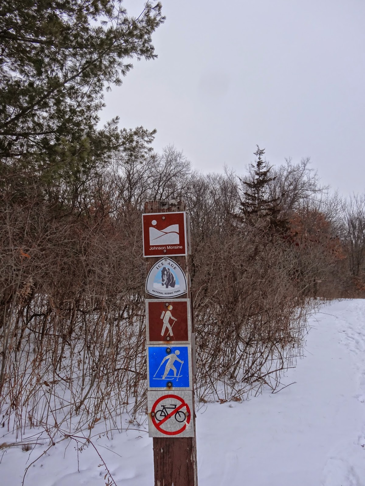 This Johnson Moraine Loop portion of the Ice Age Trail is closed for hiking with the trail is groomed for cross country skiing.
