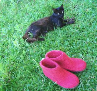 uma gata e um sapato tricotado, tingido e feltrado número 36