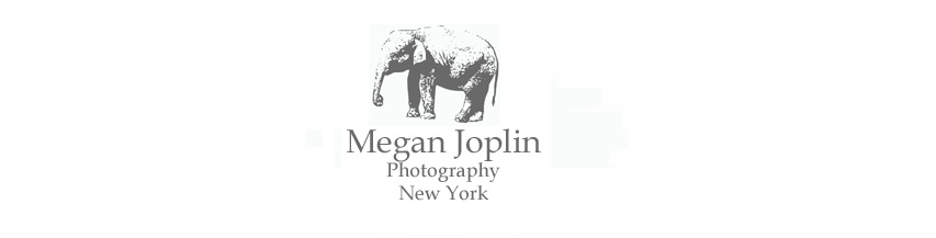 Megan Joplin Photography