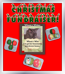 http://celestialkitties.blogspot.com/2012/11/winnies-wish-christmas-fundraiser.html