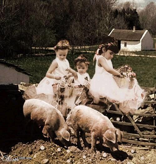 perle ai porci latino dating