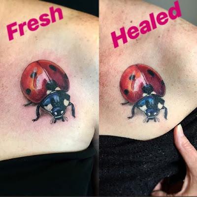 Care of New Ladybug Tattoo