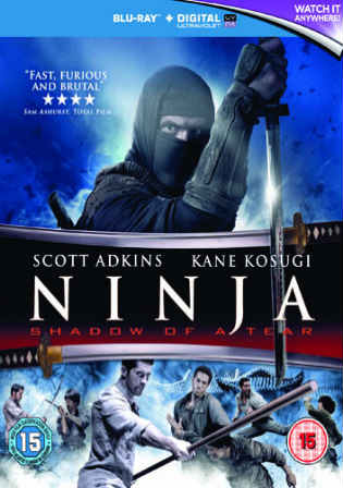 Ninja Shadow Of A Tear 2013 BRRip 300MB Hindi Dual Audio 480p ESub Watch Online Full Movie Download bolly4u