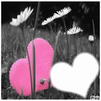 Sms d'amour tendre je pense à toi