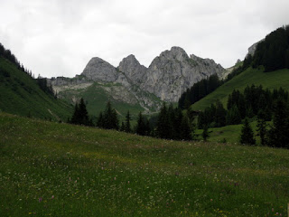 Wildflower meadow with distant craggy peaks, Switzerland