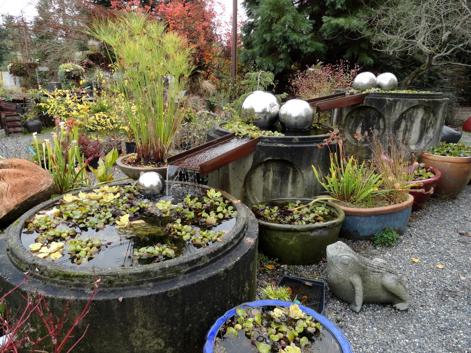 """danger garden: """"one more project""""and the winner of the potted"""