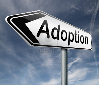 1f0d5d1ff6 Pam   Adam Adopt  The Road To Adoption