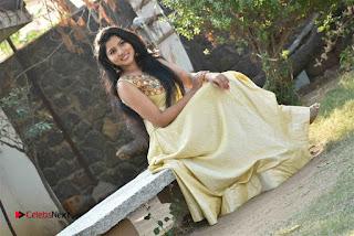 Actress Nayana Nair Stills in Long Dress at Arasakulam Tamil Movie Audio Launch  0014.jpg