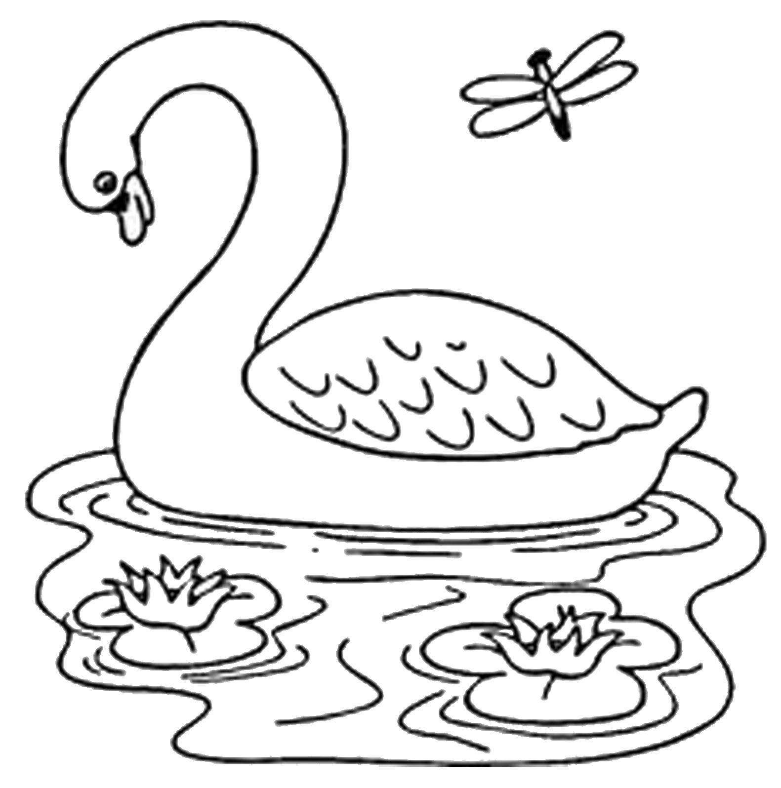 Gambar Mewarnai Jerapah Lucu Kaligrafi Kartun Hewan Diwarnai Buah Apel