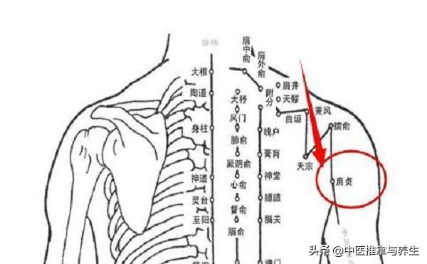 每天只需20分鐘,中醫9個穴位按摩,拯救低頭族(護頸椎)