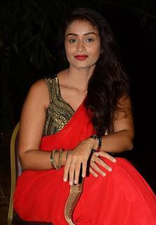Kiran Chetavani Hot Stills in Saree 4.jpg