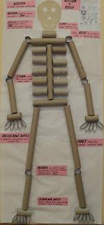 esqueleto para halloween con rollos de papel higienico