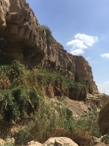 En Gedi Israel