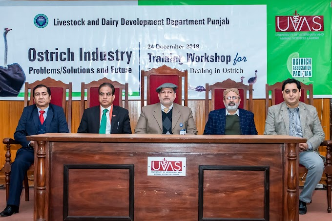 UVAS holds training workshop for focal persons on 'Ostrich Farming'