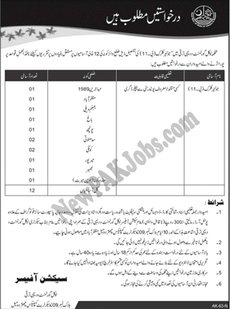 Junior Clerk Jobs in AJK, Local Government and Rural Development Department