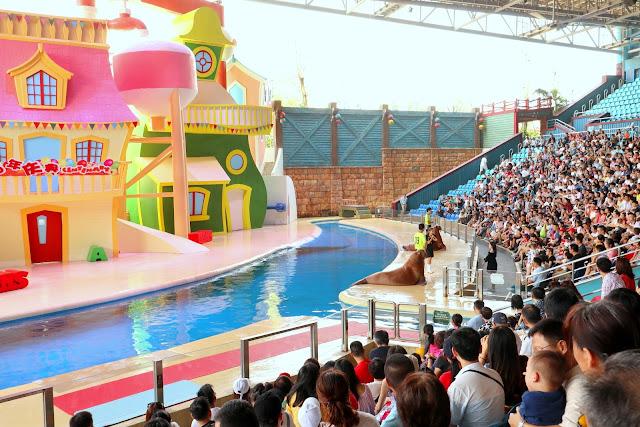 珠海長隆海洋王國表演 海獅