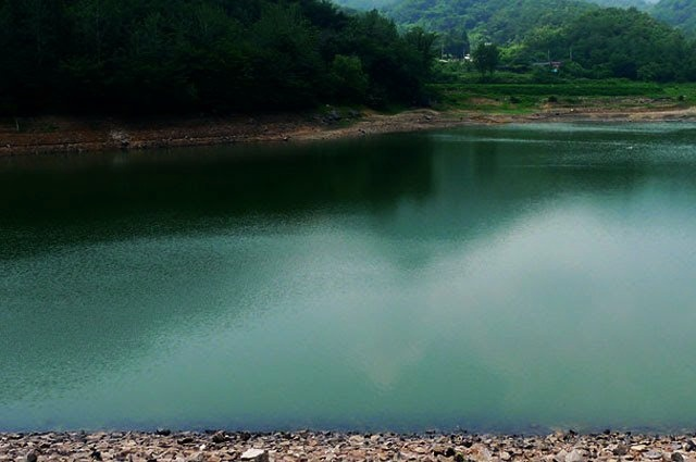 khooni-river-bloody-river-rohini-delhi