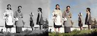 blog.fujiu.jp Windows10 で白黒写真をカラー化する方法
