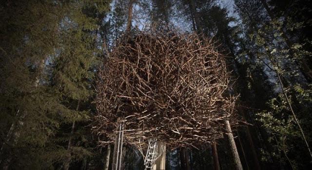 شاهد صور 29 منزل فوق الأشجار سيعجبك أن تعيش بها  Top-29-Treehouses-Bird%25E2%2580%2599s-Nest