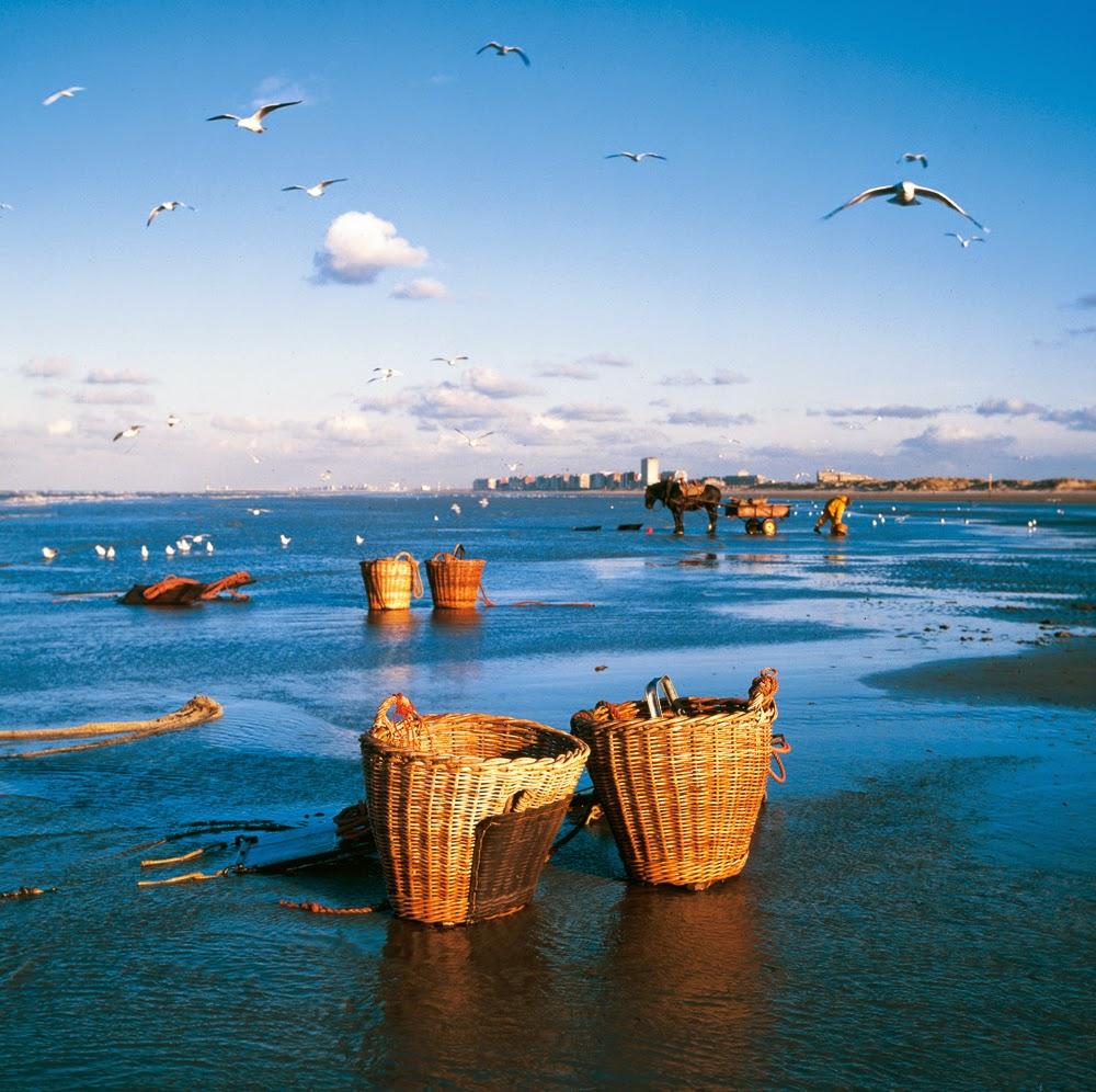10 Best Places to Holiday in Belgium (100+ Photos) | Fisherman's net. Oostduinkerke, Belgium.