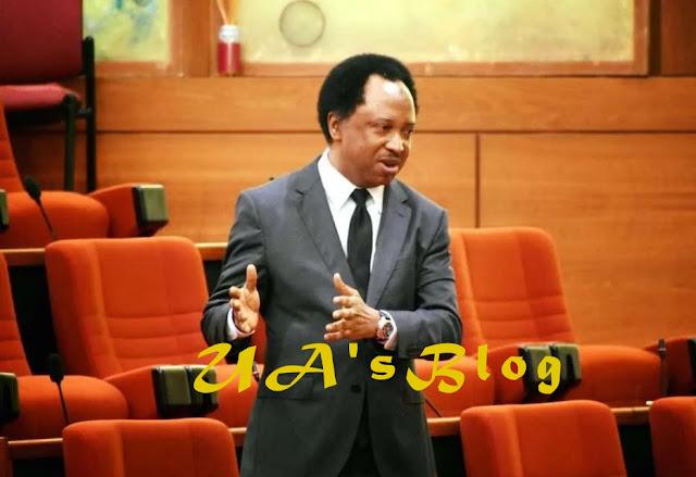 Senators Hunkuyi, Shehu Sani Set To Dump APC