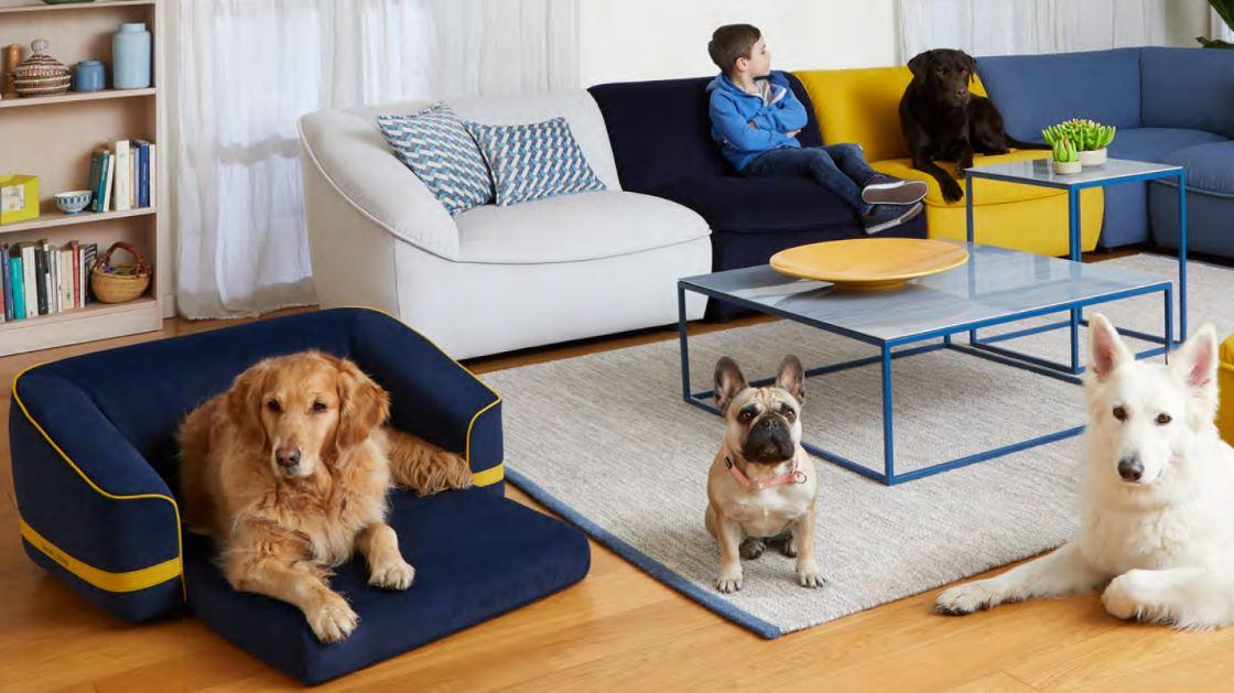 Divani & Divani presenta Kids & Pets   Sono Cose da Bimbi