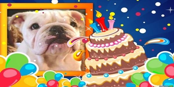 Feliz Cumpleaños, Pumba