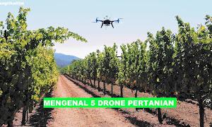 5 Drone Pertanian Terbaik Yang Bisa Anda Beli