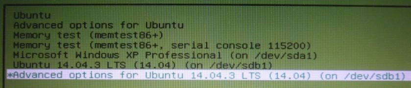 HDDのlinuxBeanを起動して、フルインストールUSBを挿してgrub,updateとするとフルインストールUSBのlinuxBeanが認識されてGrubメニューに追加されました。