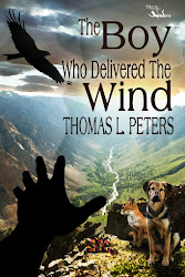 The Boy Who Delivered The Wind