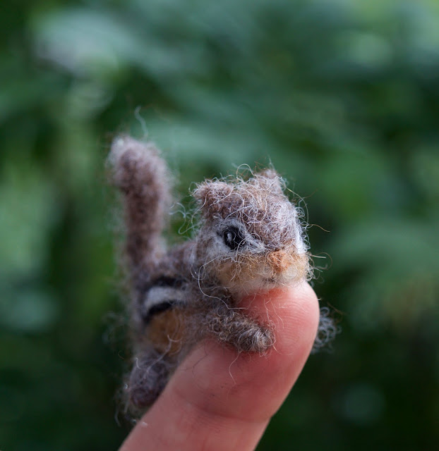 tiny wool chipmunk