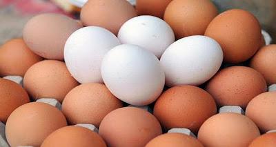 تعرف علي الفرق الذي حير الجميع بين البيض الأحمر والأبيض