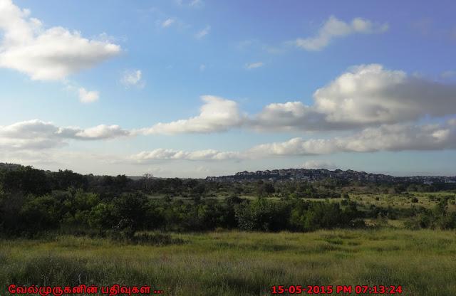 Texas - Stone Oak Park