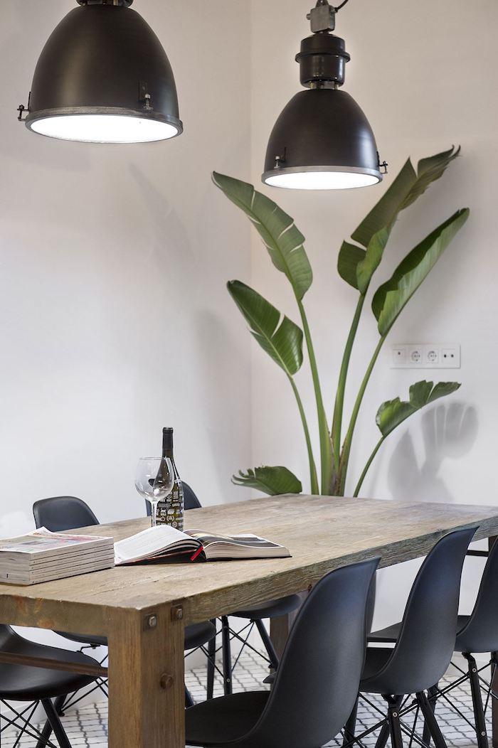 Mesa rústica con sillas Eames y platanera al fondo