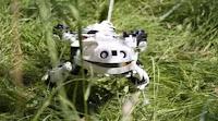 روبوتات محاكاة للحيوانات