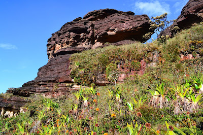 Formaciones rocosas cima Roraima