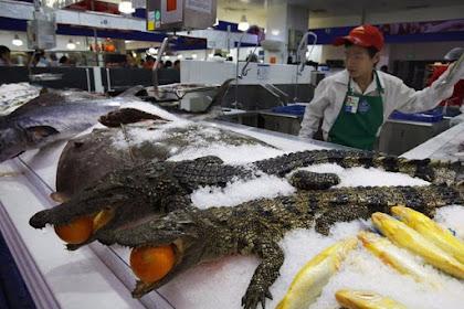 Tak Hanya Buah dan Sayur, Tapi Produk Aneh ini Juga Dijual di Pasar Cina! Ada Buaya Utuh!