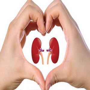 menjaga kesehatan ginjal, sehat alami, life insurance