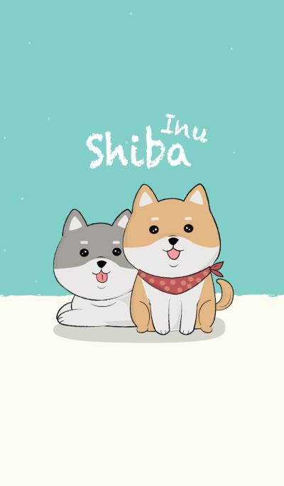 Shiba Inu lover.