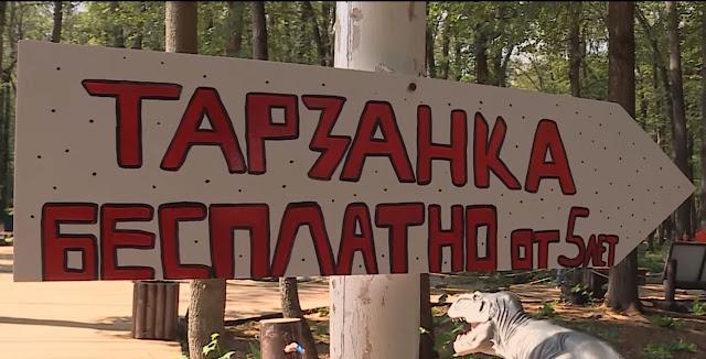 Вуфимском парке ребёнок сломал позвоночник