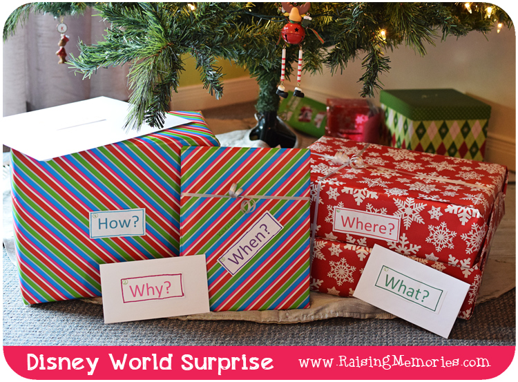 Christmas Disney Surprise Gift Reveal Idea