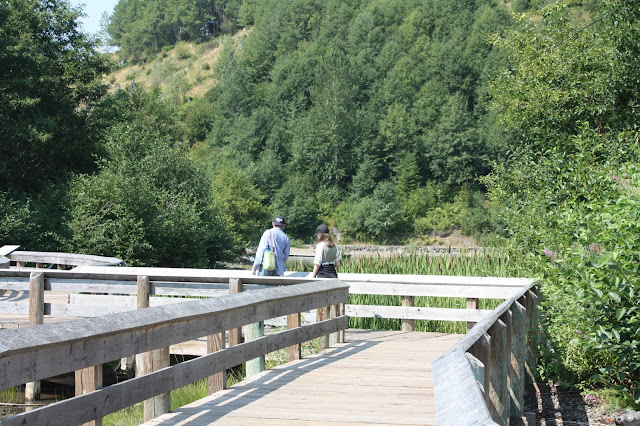 Walking the boardwalk at Coldwater Lake at Mount St. Helens National Monument.
