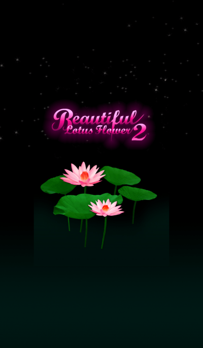 Beautiful Lotus Flower2